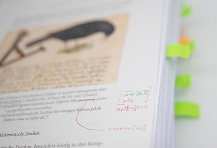 Manuskript eines Buchprojektes im Franz Steiner Verlag