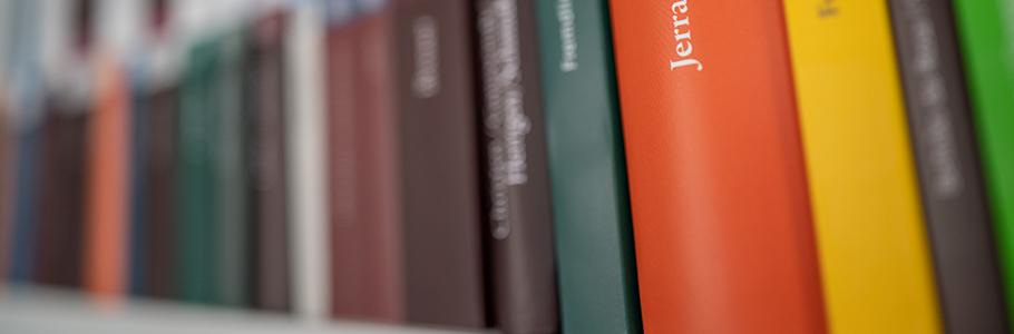 Bücherregal mit Steiner-Büchern in schräger Ansicht
